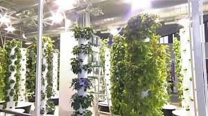 future growing tower garden farm at o u0027hare international airport