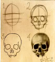 How To Draw A Halloween Picture Step By Step How To Draw A Human Skull Step By Step Drawing Tutorials For Kids