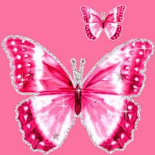 glitter wallpaper with butterflies butterfly glitter wallpaper 2794567bbbngrnmud top backgrounds