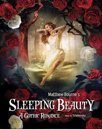 sleeping beauty projects adventures