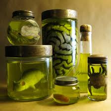 diy halloween specimen jars tutorial from dave lowe design here