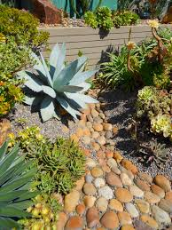 deeter buckner design cactus u0026 succulent gardens at their best
