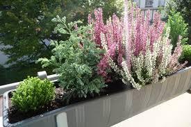 herbstbepflanzung balkon zauberhafte welten balkon und wanderung