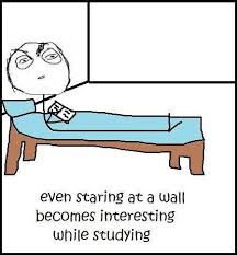 Funny Study Memes - studying is so boring funny pictures quotes memes funny