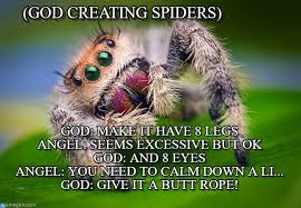 Spider Meme - god creating spiders jumping spider meme on memegen