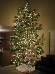 how to have an awesome experience with a real christmas tree
