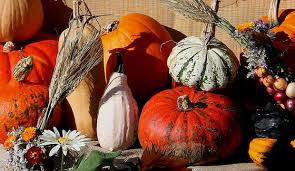 seasonal decorations fall decorating cheap conscious seasonal goodlifer