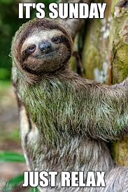 Memes Sloth - it only happens once a week so imgflip