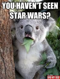 Man Cave Meme - koala meme bro my god the funniest online man cave that brings