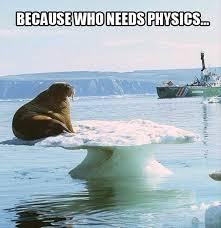 Walrus Meme - walrus archives dobrador