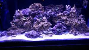 current usa orbit marine aquarium led light current usa orbit marine aquarium led light reef sanctuary