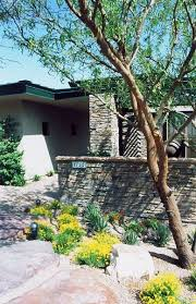 Desert Backyard Landscaping by 203 Best Landscaping Images On Pinterest Landscaping Ideas