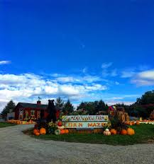 Best Pumpkin Patch Snohomish County by Meadow View Farms Llc Home Facebook