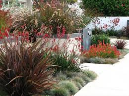 Backyard Cheap Ideas Inexpensive Landscaping Ideas To Beautify Your Yard Freshome Com