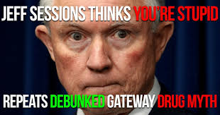 Marijuana Overdose Meme - jeff sessions is dead wrong about marijuana and overdoses
