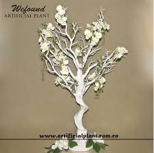 Manzanita Trees Manzanita Tree Manzanita Tree Suppliers And Manufacturers At