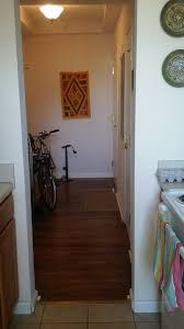 1 bedroom apartments for rent in dc apartments for rent in columbia heights dc radpad