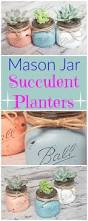 Mason Jar Wall Planter by Best 25 Mason Jar Succulents Ideas On Pinterest Mason Jar