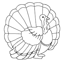 hundreds of free thanksgiving coloring pages for kids inside free