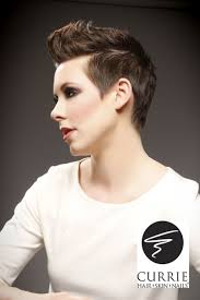 12 best short hairstyles images on pinterest hairstyles short