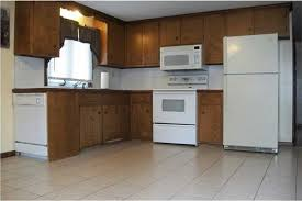 Ugly Kitchen Cabinets Need Help Painting Cabinets Etc Keeping Appliances Please Help