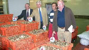 chambre de commerce granville du bulot et poisson baie de granville