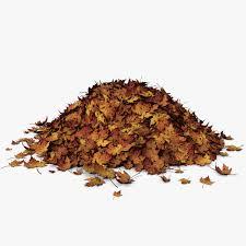 leaf pickup program cottage grove oregon
