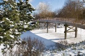 Botanical Gardens In Illinois Winter At The Chicago Botanic Garden The Official Enjoy Illinois