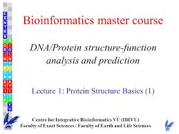 bioinformatics master course dna protein structure function
