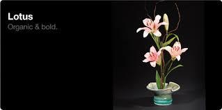Ikebana Vases Lotus Ikebana Vases