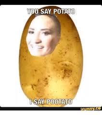 Potatoe Meme - you say potato i say pootato funny co potato meme on sizzle