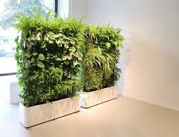 living room green plant wall divider using white wooden planter
