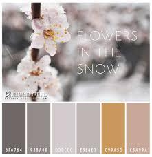 color palette winter flowers color pinterest winter flowers