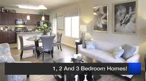apartment spyglass apartments jacksonville good home design best