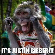 Ape Meme - omg it s justin bieber ape ril quickmeme