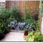 small apartment balcony garden ideas felmiatika lentine marine