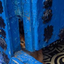 Morocco Blue City by Chefchaouen Morocco U0027s Blue City Jess Travels