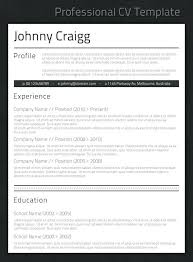 best professional resume template best resume template inssite