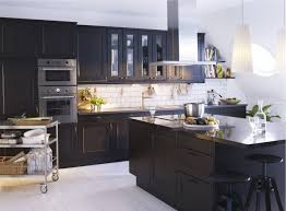 Choose The Appropriate Ikea Kitchen Cabinet For Your Style Choose - Ikea kitchen cabinet