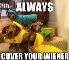Rainy Day Meme - simple rainy day meme 20 puns that are so bad they re good pleated
