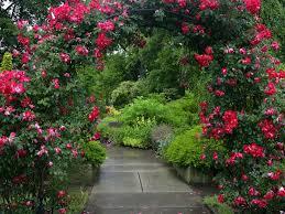 Ohio Botanical Gardens 45 Best Cleveland Botanical Gardens Images On Pinterest