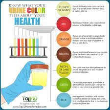 know what your urine color tells about your health top 10 home