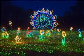 Zoo Lights Woodland Park Holiday Lights Irmo Chapin Recreation Commission