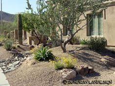 Desert Backyard Ideas 110 Desertscape Designs Youtube Garden Patio Balcony