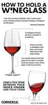 Types Of Wine Glasses And Their Uses About Glass Wine Glasses Prints U0026 Posters Pinterest Wine Glass And