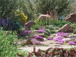 colorado xeriscape plants xeriscape gardening colorado colorado
