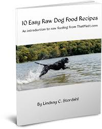 my raw feeding guide with 10 easy raw dog food recipes how to