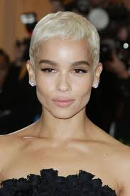 best 20 platinum blonde pixie ideas on pinterest pixie
