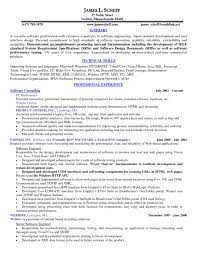 resume executive summary example cook resume example junior sous chef sample executive summary and cook resume example junior sous chef sample executive summary and technical skills software consulting template 1024