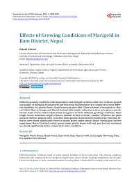 Marigolds Shade by Effects Of Growing Conditions Of Marigold In Ilam District Nepal